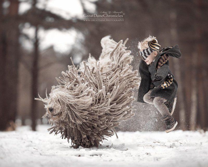 комондор, венгерская овчарка, собака, зима, полет, прыжки Games with Magic Mopphoto preview