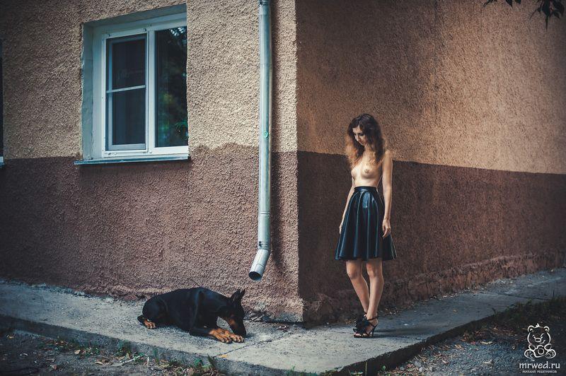 доберман, девушка, угол, концептуальное, Михаил Решетников слишком концептуальноеphoto preview
