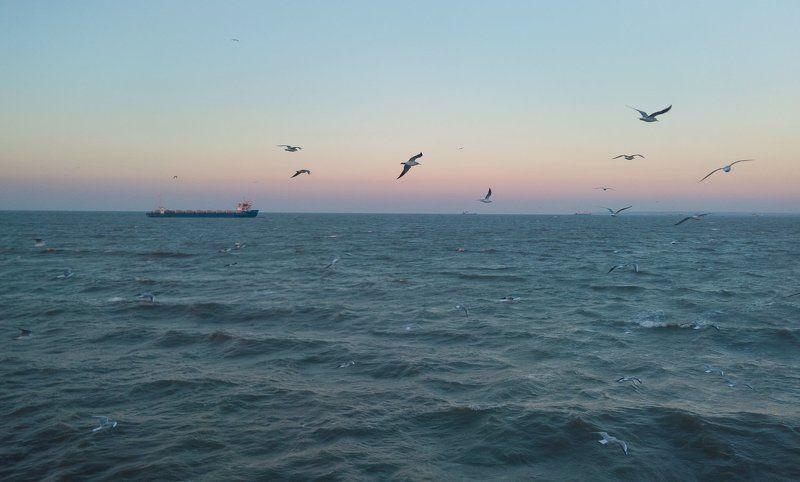 крым, море, горы, свет, закат, рассвет, природа, осень Пейзаж с чайкамиphoto preview