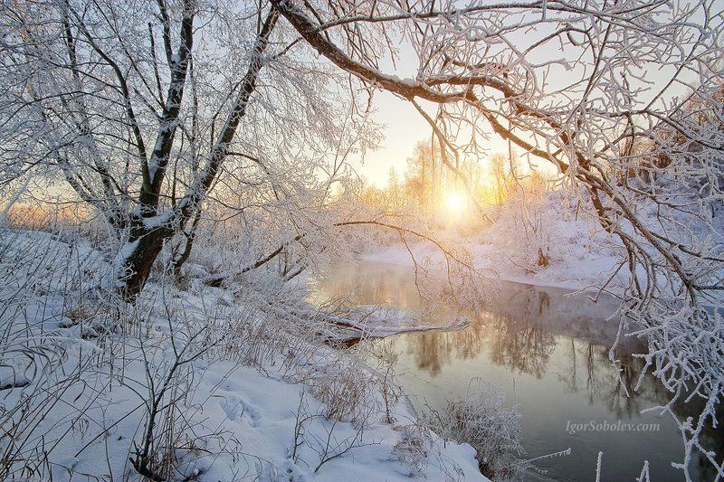 fog, frost, ice, istra, morning, moscow, moscow region, rays, river, russia, snow, sun, winter Мороз и солнце, день чудесный...photo preview