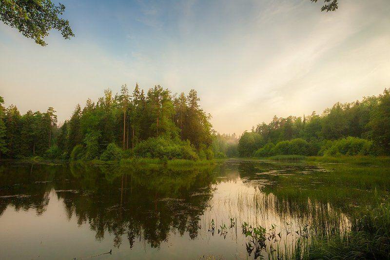 вечер, озеро, лес, печерск Любимый Печерскphoto preview