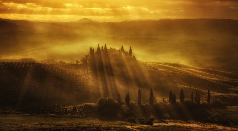 Golden Tuscanyphoto preview