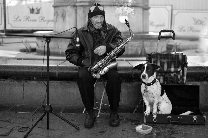 The street musician.photo preview