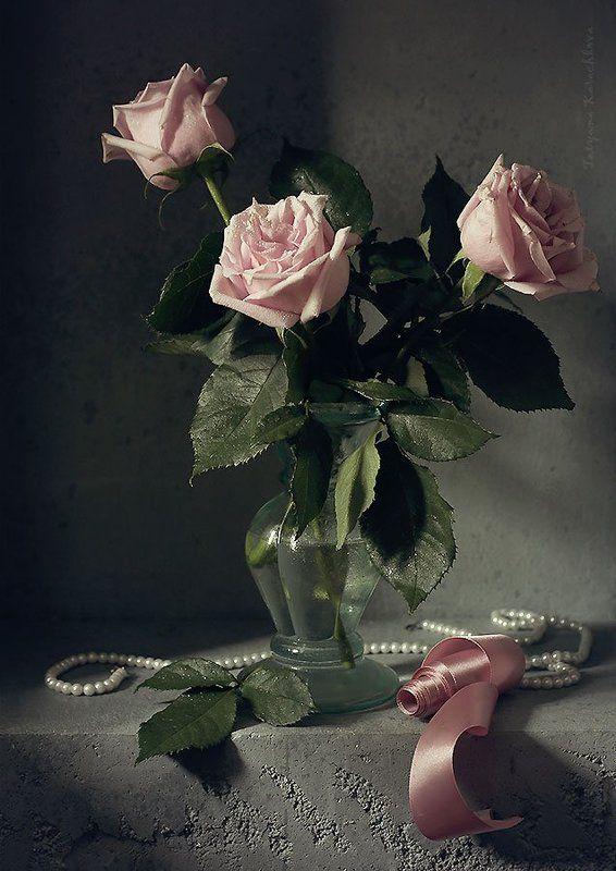 розы, цветы, лунный свет Three roses in the moonlightphoto preview