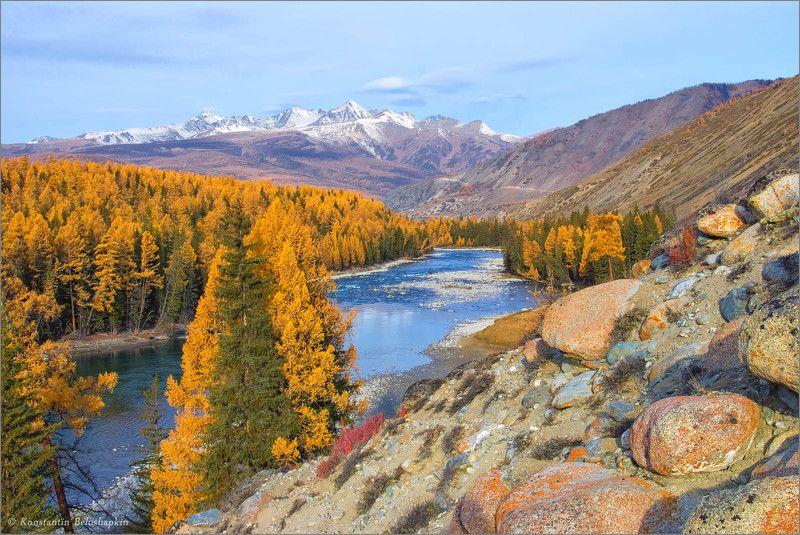 самаха, аргут, горы, алтай, осень, шенелю Самахаphoto preview