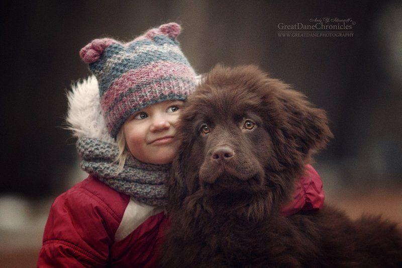 ньюфаундленд, щенок, ребенок Алиса и Шоколодкаphoto preview
