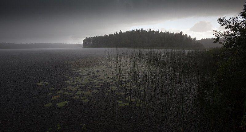 ливень, озеро, лето, свежесть, благодать Свежестьphoto preview