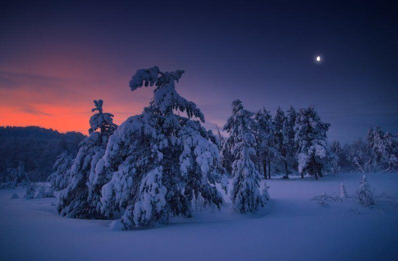 рождество, здоровье, долголетие, счастья, любовь, зима, урал С Рождеством Христовым!photo preview