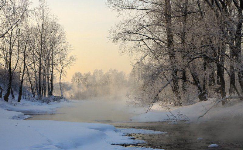 томь, мороз, зима В морозном туманеphoto preview