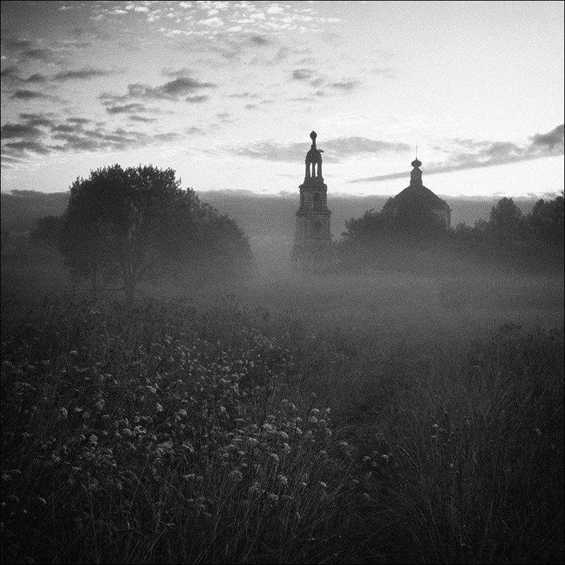 Цветы у дороги к церкви в Кузнецово летним утромphoto preview