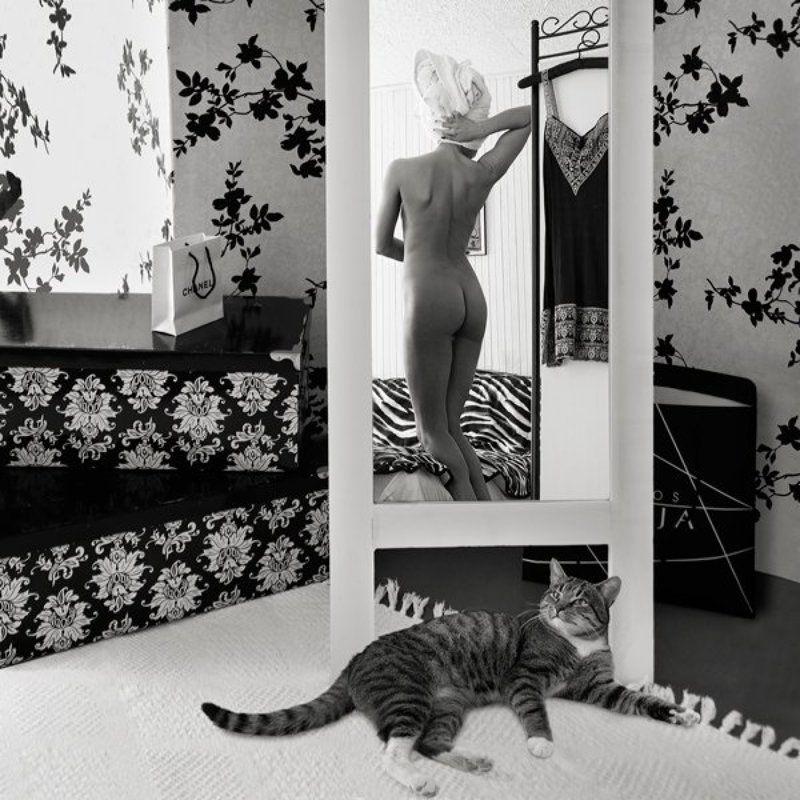 про ...кота...photo preview