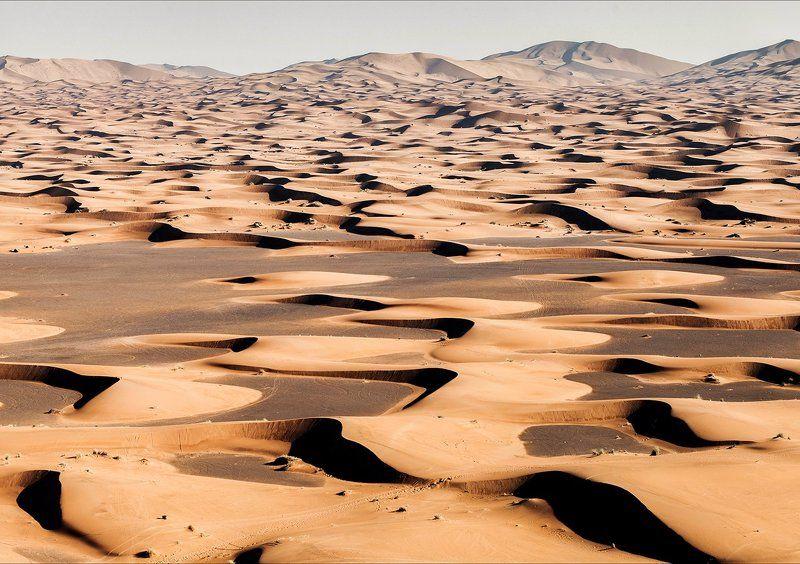 природа, африка, пустыня, песок, марокко, мерзуга, пейзаж, светотень Песочный ритмphoto preview