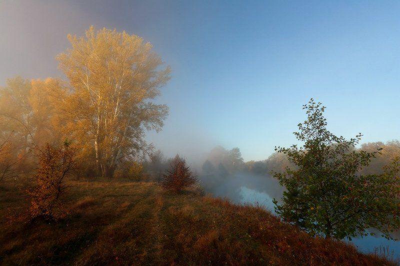 осень, утро, река, туман Под вуалью тонкою тумана.photo preview