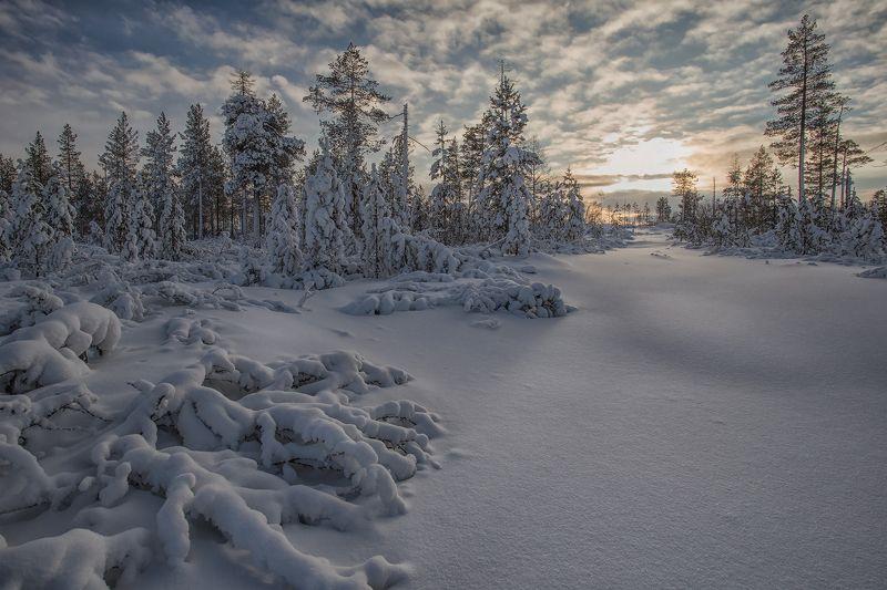 якутия, нерюнгри, зима Январскоеphoto preview