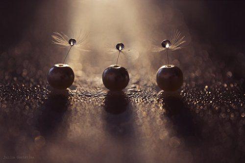 мотыльки летят на свет ...