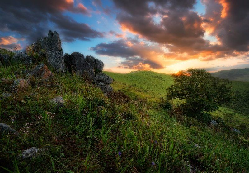 Приморский край заповедник рассвет море солнце После ливняphoto preview