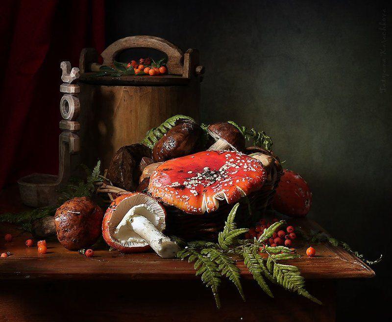 грибы, натюрморт, мухоморы Про мухоморыphoto preview