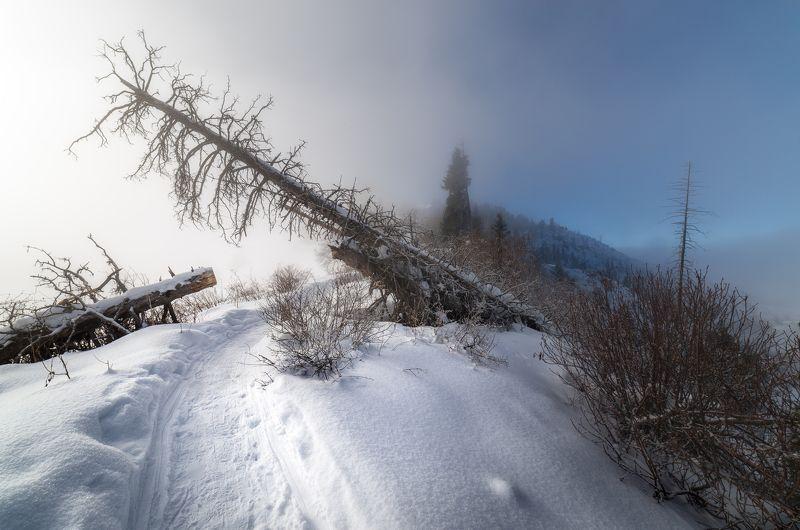 казахстан, горы, пейзаж в тумане, Рождественское таинство.photo preview