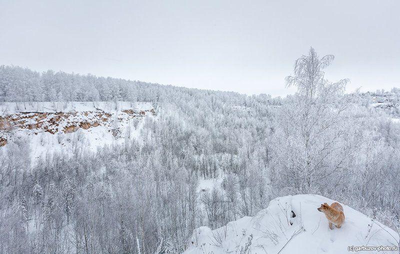 Идут белые снеги…photo preview