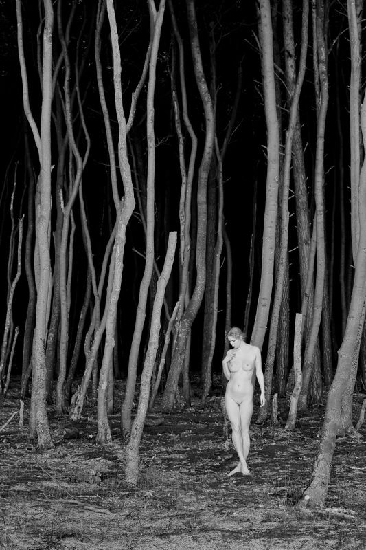 forest, trees, girl, nude Abweichung (deviation)photo preview