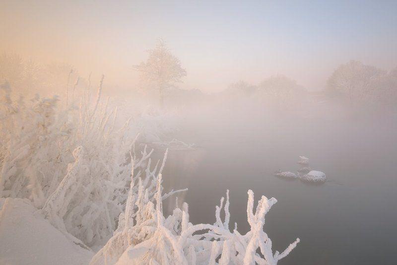 Туманный январь.photo preview
