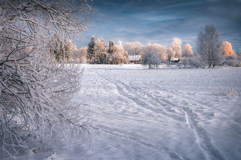 winter,landscape,light,зима,утро,пейзаж Зима в Платонеphoto preview