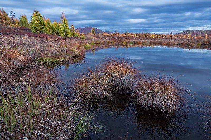 колыма, магадан, эликчанские озера, крайний север, осень, кочкарник, сумерки Отражая пасмурное небоphoto preview