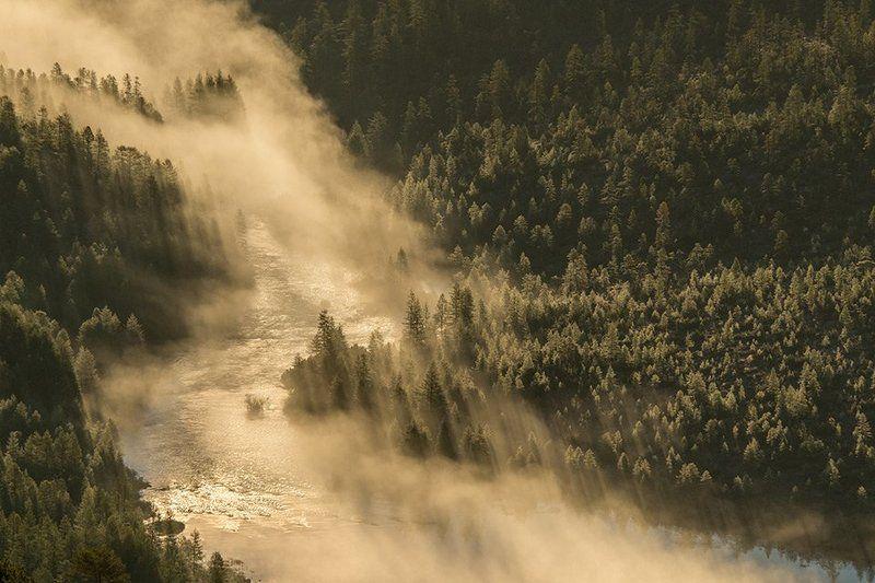 колыма, озеро джека лондона, река кюель-сиен, магаданская область, россия, река, утро, рассвет, лиственницы, туман Кюель-Сиенphoto preview
