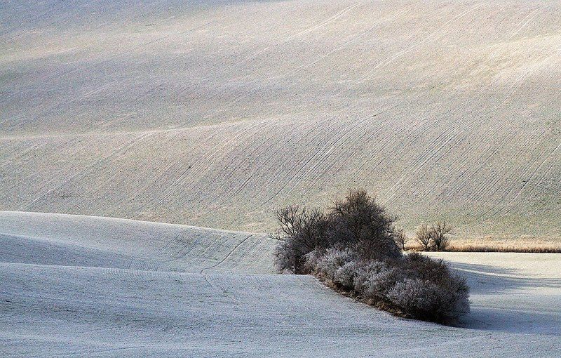 Moravian Tuscany in winterphoto preview