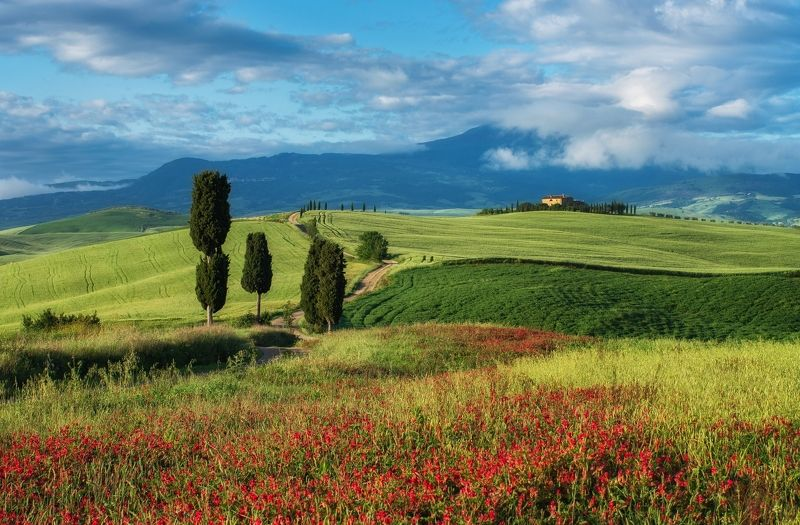 Тоскана Италия Весна пейзаж путешествия  Весенняя тосканскаяphoto preview