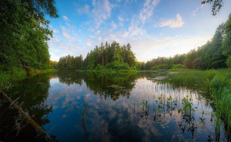лето, вечер, озеро лес, благодать, природа, печерск, могилев, беларусь Летним вечером...photo preview