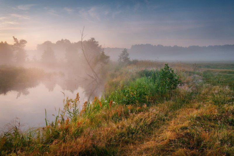 Беларусь, Лето, Июль, Рассвет, Туман, Река Летнее утро на Усеphoto preview