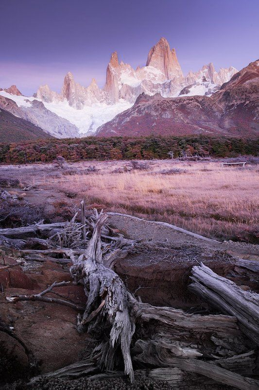#fitzroy, #patagonia, #el_chalten ПАТАГОНСКИЕ КОРЯГИphoto preview