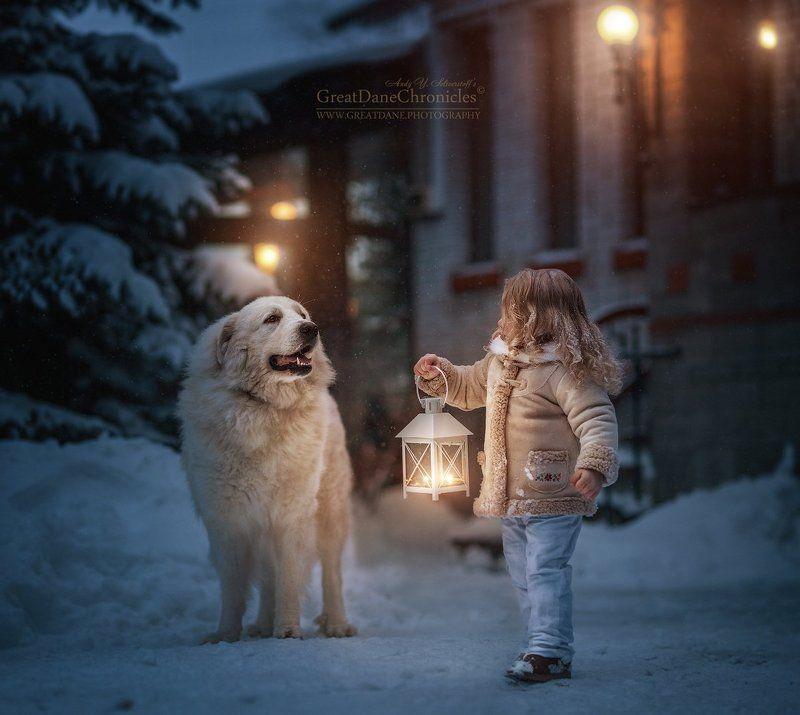собаки, дети, зима, рождество, сказка, большая горная пиренейская собака Marika\'s Power Starphoto preview