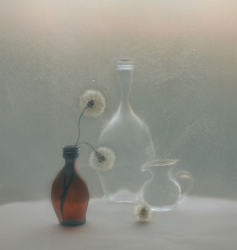 одуванчик, кувшин, бутылка, арт, натюрморт с одуванчикамиphoto preview
