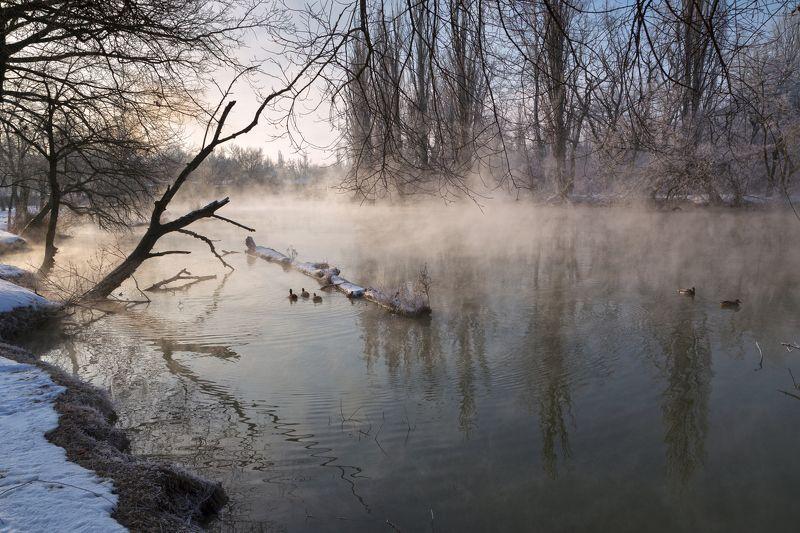 Туман над водойphoto preview