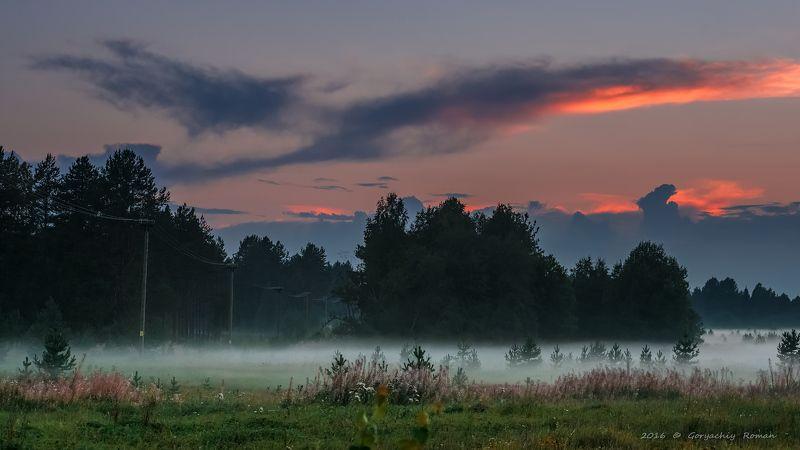 великий двор,вологодчина,кема,север, Вечером в поле.photo preview