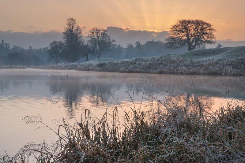 ирландия, рассвет, мороз, иней Однажды морозным утромphoto preview
