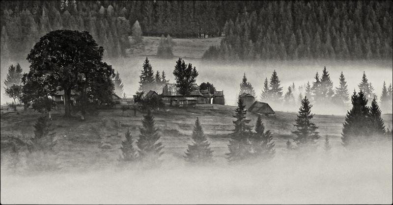 карпаты,осень, поселок, туман, утор,сенечив Там, за туманами...photo preview