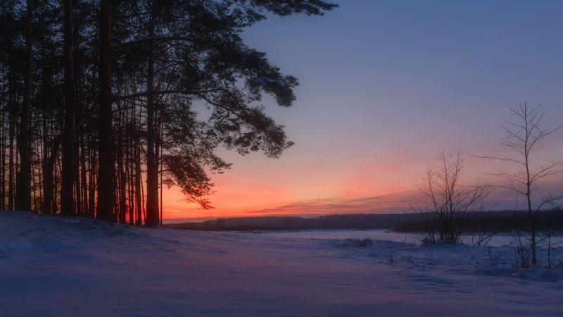 зима, закат, снег, сумерки, мороз photo preview