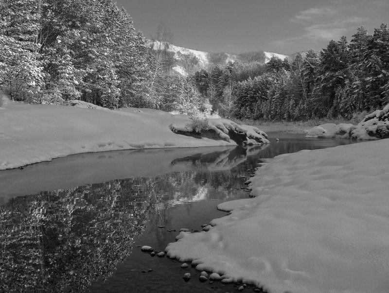 Чёрно-белая зимаphoto preview