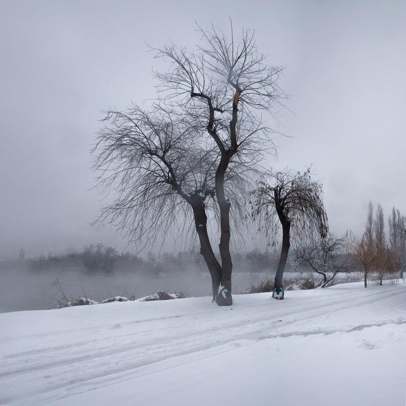 Холодное утро на островеphoto preview