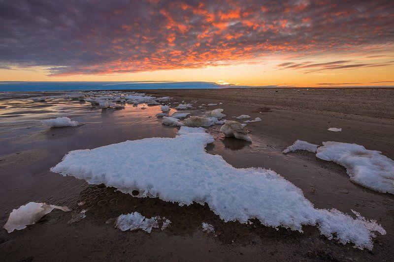 арктика, стамуха, лед, тундра Арктический пляжphoto preview