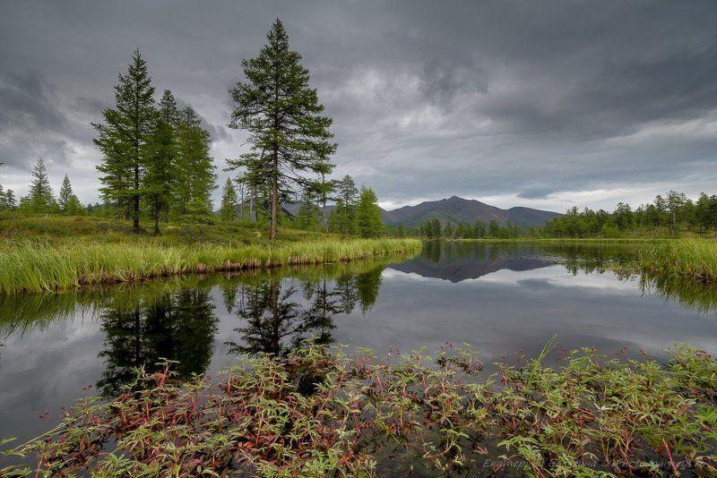 колыма Лето на Эликчанских озерах...photo preview