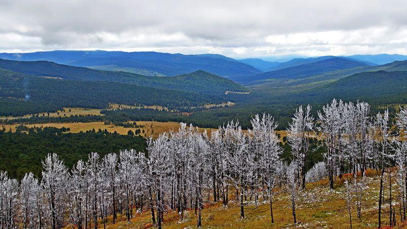 пейзаж, осень, горы, Горный Алтай Про Горный Алтай! photo preview