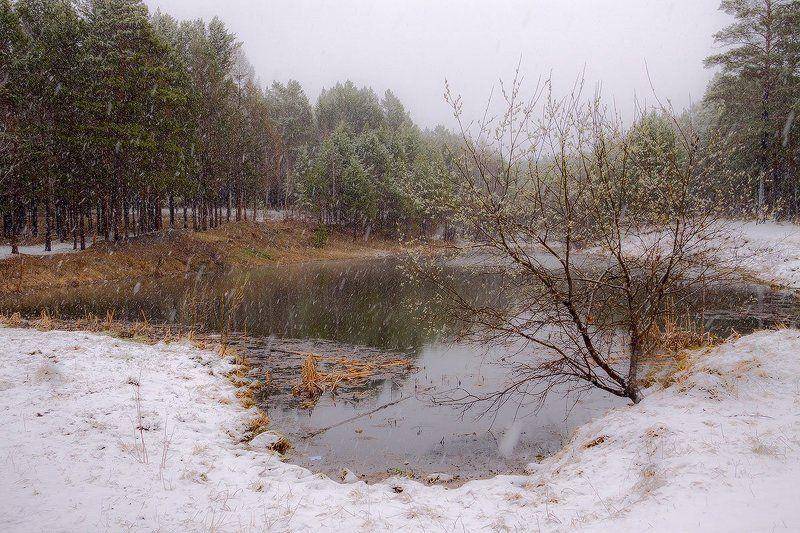 Майский снегphoto preview