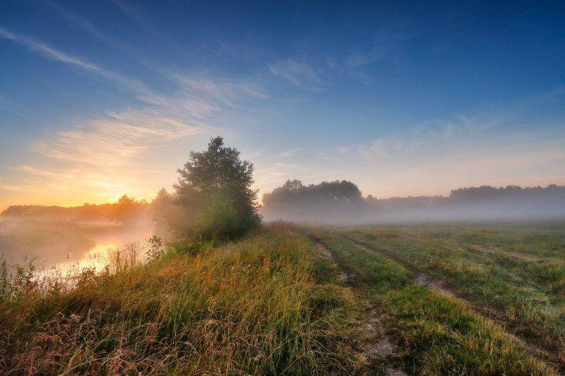 беларусь, июль, лето, неман, рассвет, река, туман, утро Летнее утроphoto preview