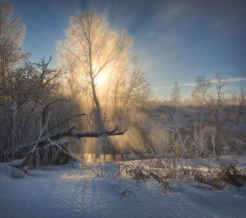 зима, пейзаж, рассвет, иней, туман, солнце, пейзажное фото, фототуры выходного дня, истра, снег Туманная фантазияphoto preview