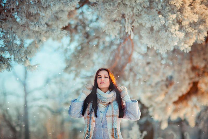 Снежное волшебствоphoto preview