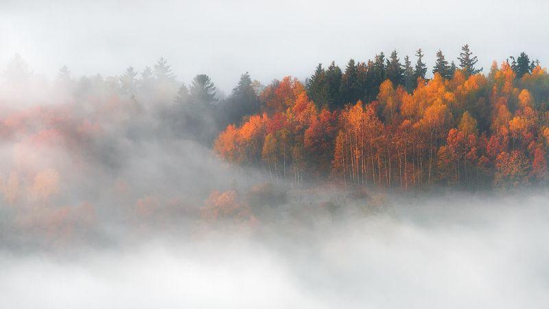 landscape,canon,mist,light,autumn Ode to Autumnphoto preview